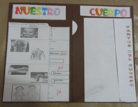 lapbook-cuerpo-humano-067