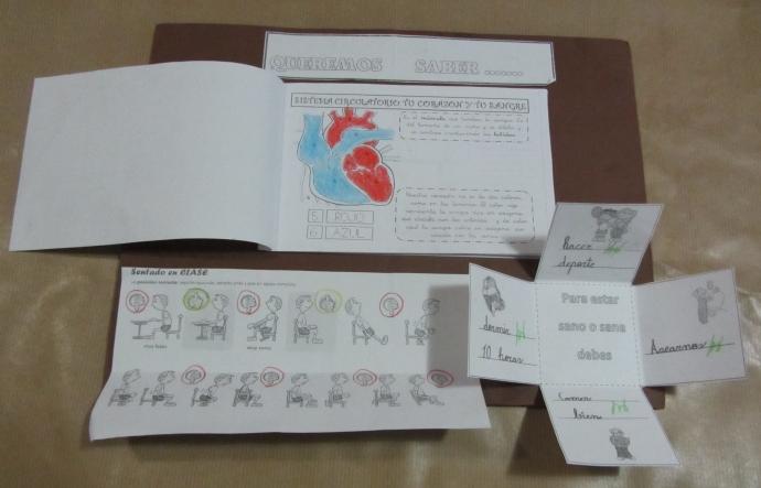 lapbook-cuerpo-humano-076